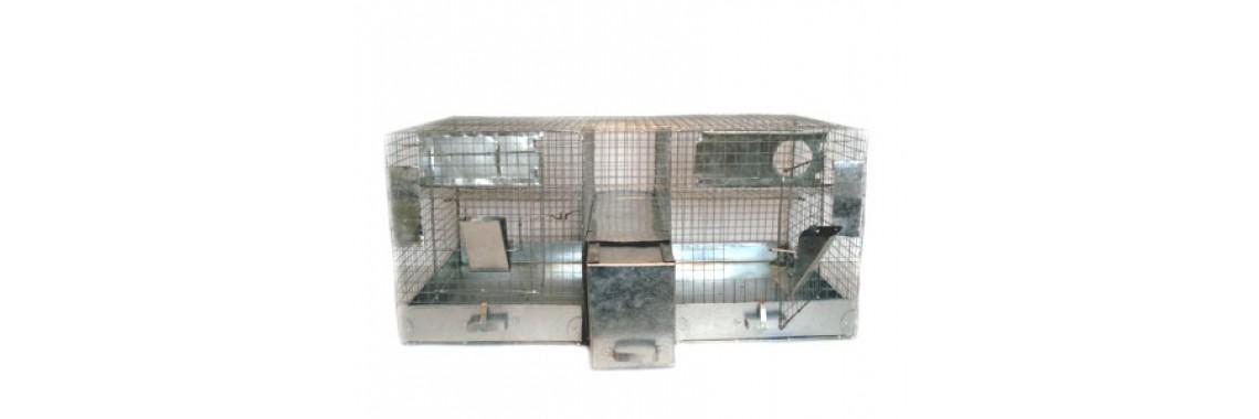 Cage for chinchillas